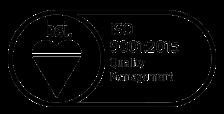 Bsi Smaller Logo
